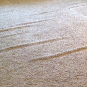 wrinkled carpet